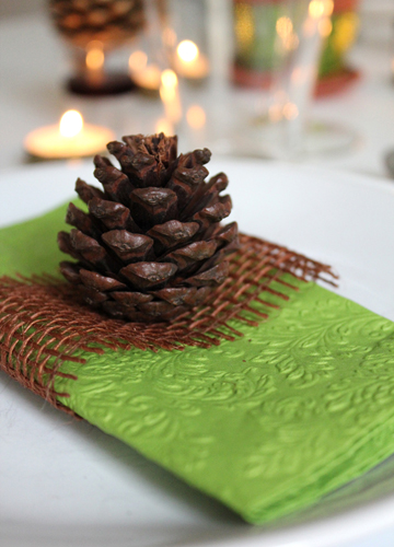 Pinecones and Pears